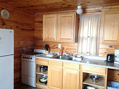 Cabin4 Kitchen