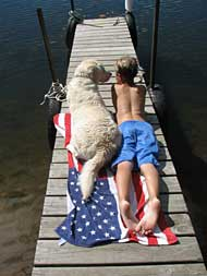 Boy and dog on dock